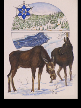 Winter_Moose.jpg